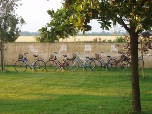 Agriturismo Zorz - Biciclette gratuite